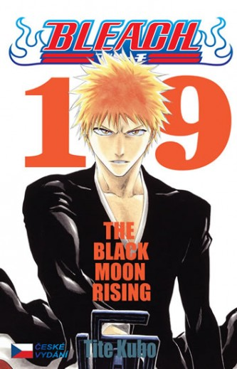 Bleach 19: Black Moon Rising