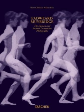 Eadweard Muybridge. The Human and Animal Locomotion Photographs